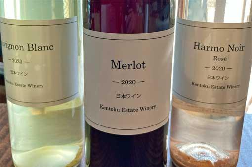 鎌倉のフレンチのオーナーシェフが転身してワイン造り